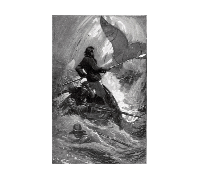 Many artists have created renditions of scenes from Moby-Dick. This illustration by I. W. Taber features Captain Ahab, a man who is set on pursuing the white whale after losing his leg to it.