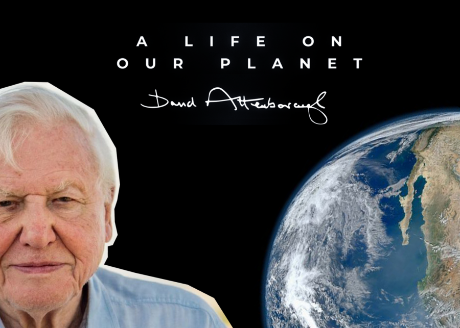 """A Life on Our Planet"" may be the most influential movie out of David Attenborough"